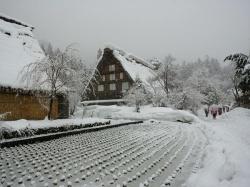 Shirakawa-go, in the snow