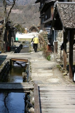 A path in Shirakawa-go