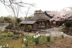 Yufuin Hot Spring