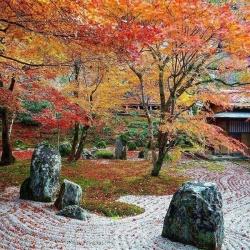 Zen Temple