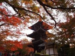 Shinnyodo Temple