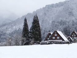 Shirakawa-go in the snow