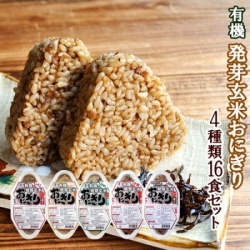 Organic Germinated Brown Onigiri (Rice Balls) | Set of 5 Different Kinds